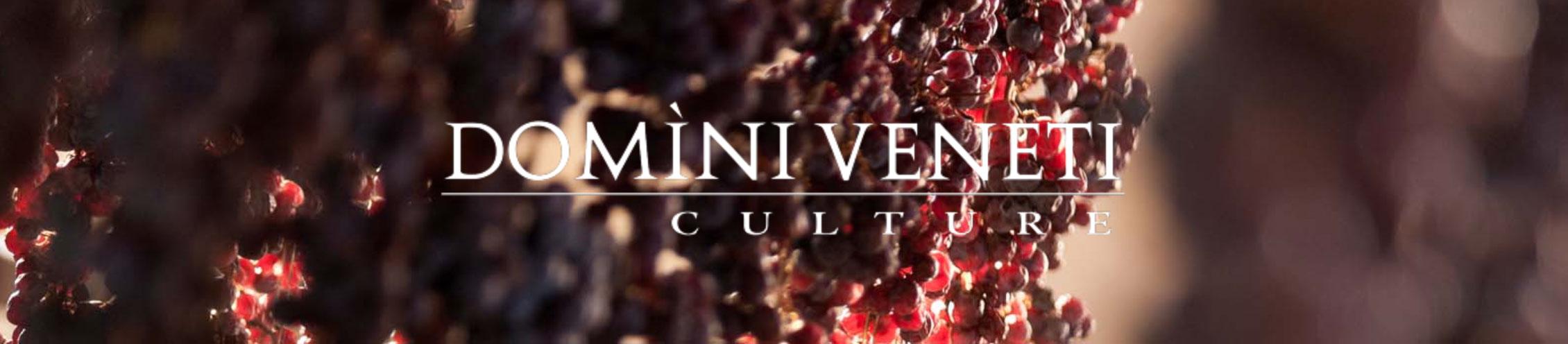 Domìni Veneti Culture